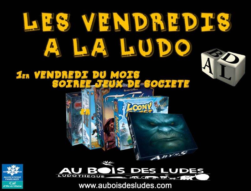 Soirée jeux de société / Janvier 2016