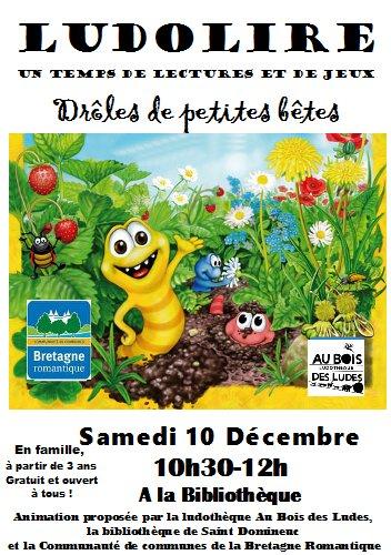"""Ludolire """"Drôles de petites bêtes"""" à la bibliothèque de Saint Domineuc"""